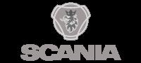 3. Logo-Scania